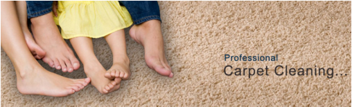 Professional carpet cleaning Spring hill, fl